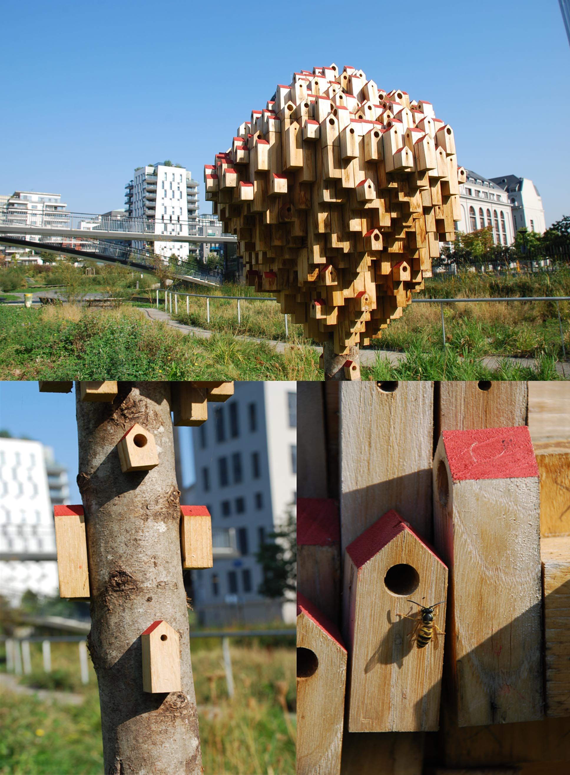 abri abeilles solitaires grands moulins paris