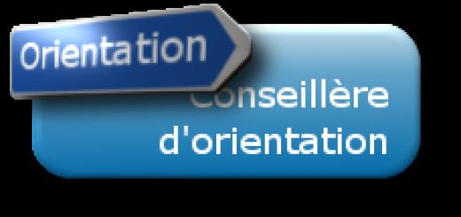 bandeau_bleu_orientation_conseillere_22x106