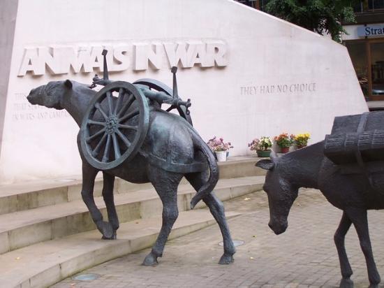 animals-in-war-memorial